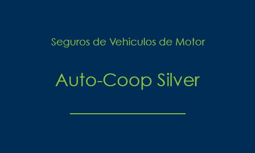prod_auto_coop_silver