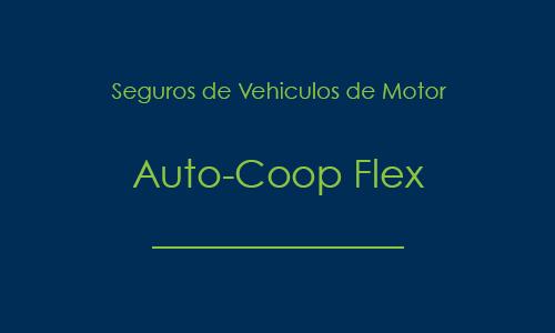 prod_autocoop_flex